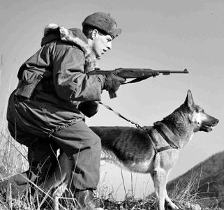 scout dog team in the korean war